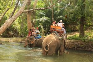 Слонячья ферма